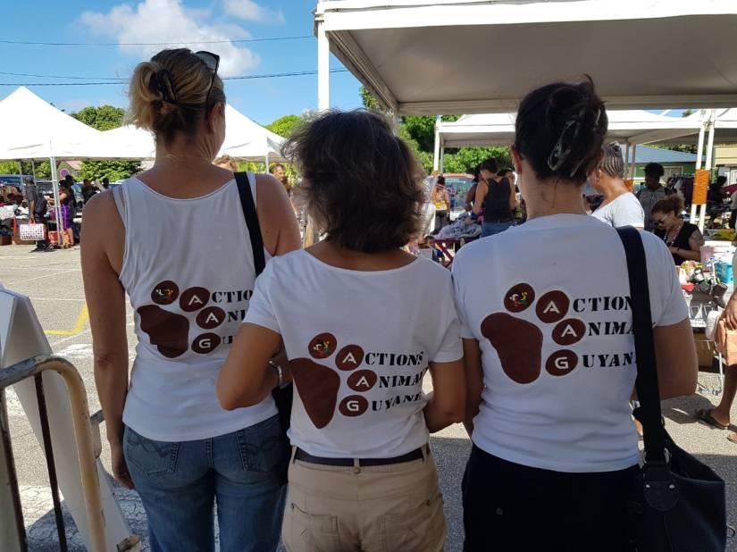 bénévoles sensibilisation stérilisations chiens chats Guyane