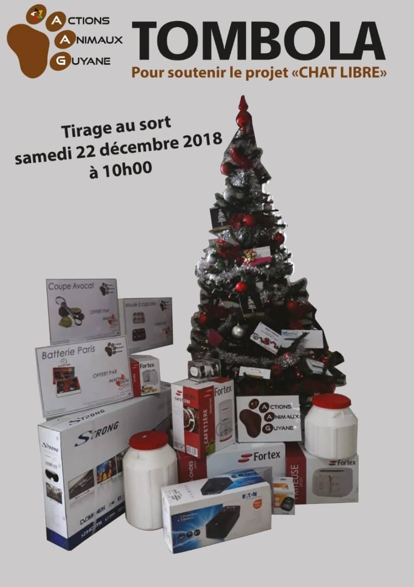 IMG-20181221-WA0008