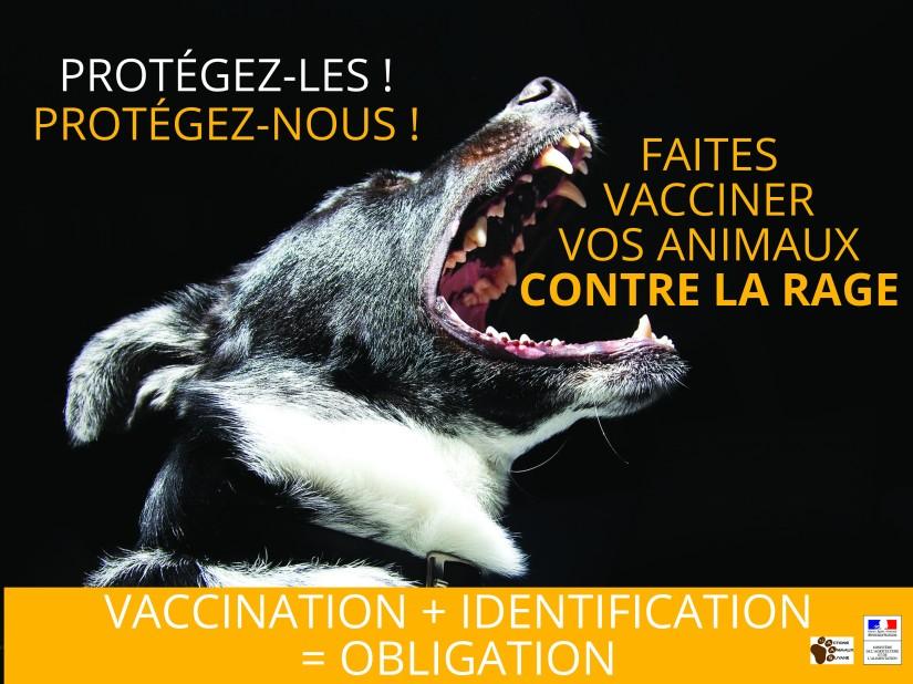 Visuel vaccination 4x3_V3 (1).jpg